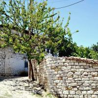 Zdjęcia hotelu: Guest House Vasili, Berat