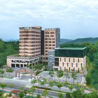 Fotografie hotelů: Andong Richell Hotel, Andong