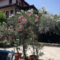 Hotelbilleder: Villa Lenchevski, Gorno Nerezi