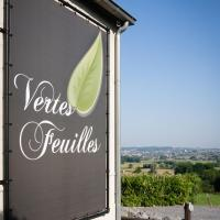 Hotelbilleder: Vertes Feuilles, Saint-Sauveur