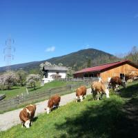 Hotellbilder: BIO Betrieb Saumerhof, Schladming