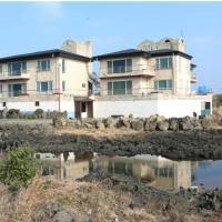 酒店图片: 济州绿色度假屋, 济州市