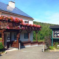 Hotelbilleder: Ferienhotel Zwotatal, Zwota