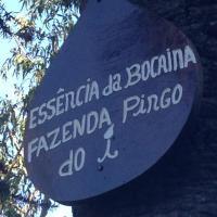 Hotel Pictures: Essencia da Bocaina - Fazenda Pingo do i, Silveiras