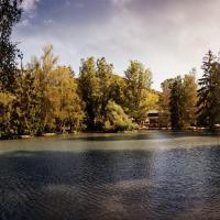 Hotelbilleder: Land-gut-Hotel Forellenhof, Bundenbach