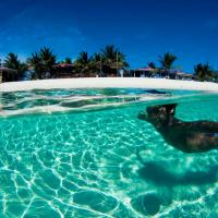 Fotos de l'hotel: Bohio Dive Resort, Grand Turk