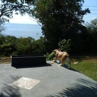 Hotel Pictures: Casa Varanda do Tupé, Manaus