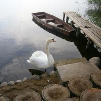 Zdjęcia hotelu: agrousadyba Noviatka, Braslaw
