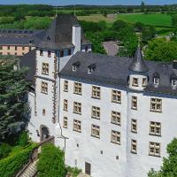 Hotelbilleder: Victor's Residenz-Hotel Schloss Berg, Nennig