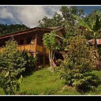 Zdjęcia hotelu: Selang Pangeran Homestay & Jungle Trekking, Bohorok