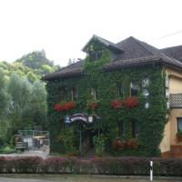 Hotel Pictures: Landgasthof Wiesenmühle, Burg Hohenstein