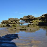 Fotos do Hotel: Mecohue, Playas Doradas