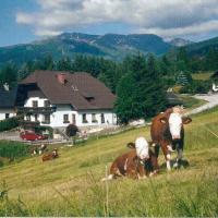 Hotellbilder: Apartment Prodinger, Mariapfarr