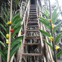 Fotografie hotelů: Island Of Fire Bungalow, Tanna Island