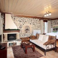 Studio with Fireplace