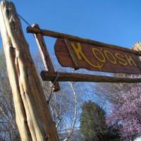 Hotellbilder: Cabañas y Posada Ko'osh, El Hoyo