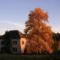 Hotel Pictures: Chambres d'Hôtes La Lupronne, Cornil