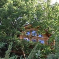 Superior Tree House with Hot Tub