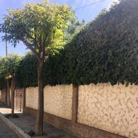 Hotellikuvia: Apartamento con jardin, Cochabamba