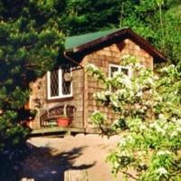 Hotel Pictures: Alderwood Farm Cozy Cottage, Bowen Island