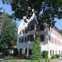 Hotelbilleder: Hotel Schloss Lehen GmbH&Co,KG, Bad Friedrichshall