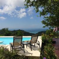 Hotel Pictures: Royal Palm Villa, Mal País