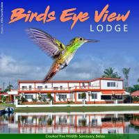 Φωτογραφίες: Birds Eye View Lodge, Crooked Tree