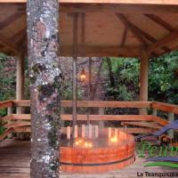 Zdjęcia hotelu: Cabañas Peumayen, Recinto