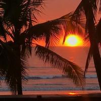 Hotellbilder: Gallina E Palo Beachfront Hotel, Jacó