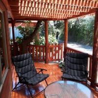 Фотографии отеля: Cabaña la Araucaria, El Manzano