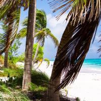 Zdjęcia hotelu: Coral Beachside, Bailey Town