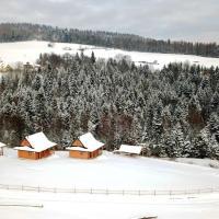 Zdjęcia hotelu: Chatki Niwki u Zbója, Krościenko