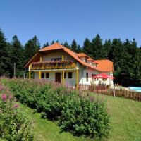 Hotel Pictures: Penzion Patrik, Starý Hrozenkov