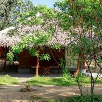 Φωτογραφίες: Eco Golden Park Hotel, Tissamaharama