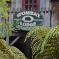 Hotel Pictures: The Wombat Lodge, Tullah