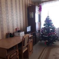 Hotellbilder: квартира по ул.Победы 23 корп.3, Saransk