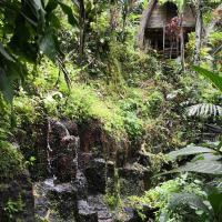 Hotelfoto's: Jungle Dream, Payangan