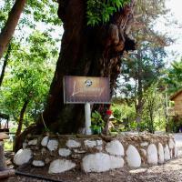 Фотографии отеля: Cabañas Licanantay, Vallenar