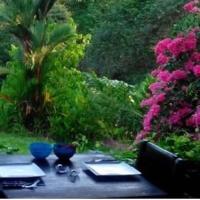 Hotellbilder: La Cacatua Lodge, Uvita