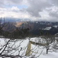 Foto Hotel: Apple Farms Kufri, Shimla