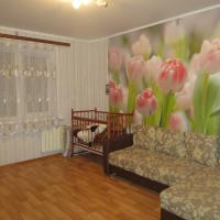 Hotelbilleder: Apartment on Lyambirskoye Shosse, Saransk