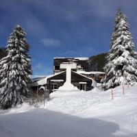 Hotellikuvia: Nelse Lodge, Falls Creek