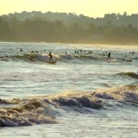 Hotel Pictures: Holiday Cottage, Weligama