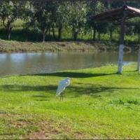 Hotel Pictures: Pesqueiro Minas Zen, Araguari