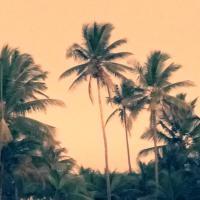 Hotel Pictures: Village Aguas do Atlantico, Ilhéus