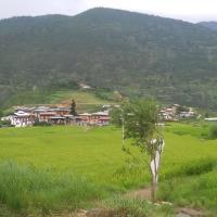 Hotelbilleder: Chimi Lhakhang Village Homestay, Punākha