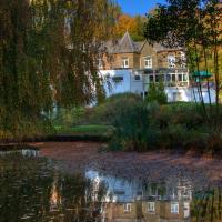 Fotos del hotel: Parkhotel Villa des Effats Vielsalm, Vielsalm