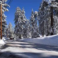 Fotos do Hotel: Pine Cone Paradise, Big Bear Lake