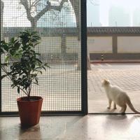 Hotellbilder: JIAJIA_HOME+, Xi'an