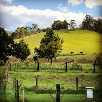 Hotel Pictures: Broula Farm, Craven